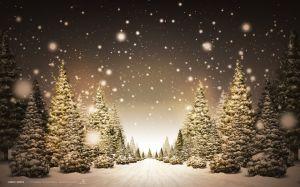 christmas_tree_01